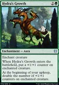 Hydra's Growth